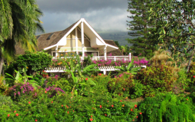Wailea and Makena Homes